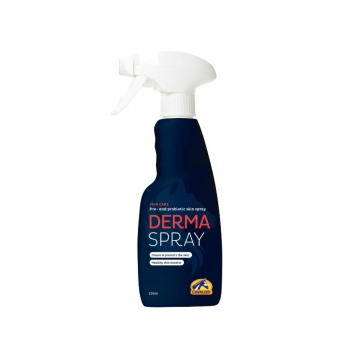 derma spray250ml.JPG