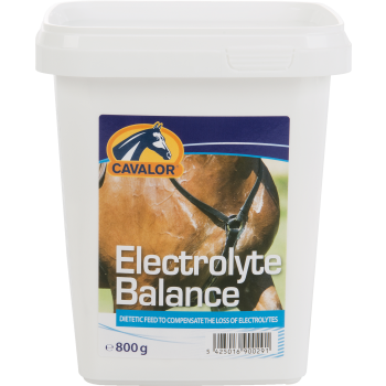 electrolyte800.png